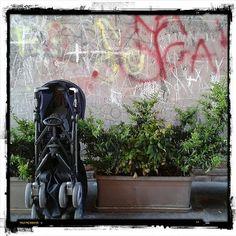 #porta #fiume di #cesena #romagna #fun giornata #fai di #primavera #cultura #storia #igfriends_emiliaromagna_ #mytown #instamood #instacesena #instaromagna #igersemiliaromagna #ig_forli_cesena #ig_emiliaromagna #vivoemiliaromagna #volgoitalia #volgoemili - #square squareformat iphoneography instagramapp http://buff.ly/1Mu4dSu