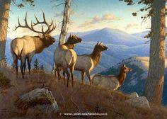 """Sounds of Autumn"" -mansanarez Wildlife Art by Tom Mansanarez, limited edition prints featuring elk, deer, antelope, moose, cats, cougar, mountain lion, hounds, horses, and bobcats. - Limited Edition Prints"