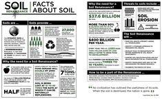 soil facts infographic