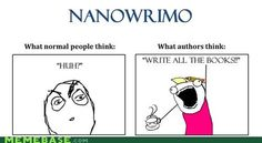 """""""WTF is Nanowrimo?"""" LOL :D"""