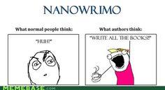 NANOWRIMO in a nutsh