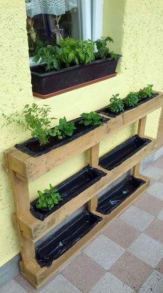 Vertical Garden Design, Herb Garden Design, Vertical Gardens, Vertical Bar, Potager Palettes, Herb Garden Pallet, Vegetable Garden, Palet Garden, Pallet Garden Walls