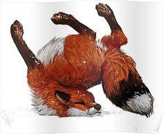 Fox Tumbles Poster