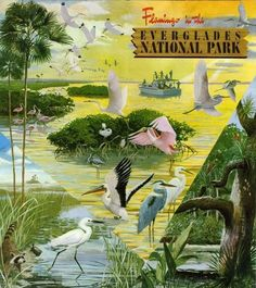 The Florida Everglades National Park (vintage 1950s poster) is also a UNESCO World Heritage Site.