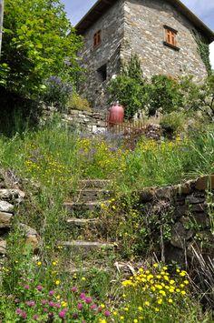 The village of Luscignano, in Lunigiana, Tuscany