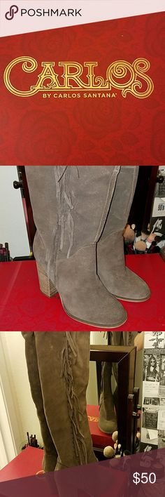 Women's boots 👢Fringe style Side zipper Thick small heel True to size Have only been used once Pairs well with high waisted jeans  💵MAKE ME AN OFFER 📦QUICK SHIP Carlos Santana Shoes Over the Knee Boots