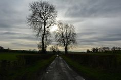 On the way to West Kennet Long Barrow