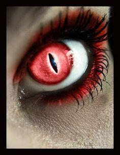 Red cat eyes