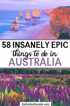 This ultimate Australia bucket list has 58 things to do in Australia. Plan your trip Down Under with Australia Visa, Australia Travel Guide, Visit Australia, Melbourne Australia, News Australia, Travel In Australia, Australia Honeymoon, Coast Australia, Best Places To Travel