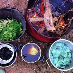 Experiments in Colour: DIY Plant Dyes - Milkwood: permaculture courses, skills + stories