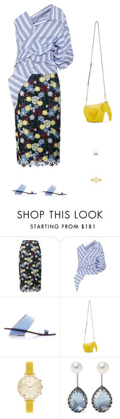 """😉"" by wangruoxi ❤ liked on Polyvore featuring Erdem, Johanna Ortiz, Abcense, Loewe, Orla Kiely and Larkspur & Hawk"