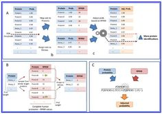 In this study, researchers from the University of Michigan present a method to utilize GPMDB identification frequencies and RNA-Seq transcri...