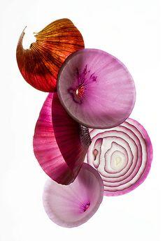 Onions by Claudia Uribe Touri