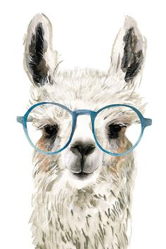 Hip Llama II Canvas Print by Victoria Borges Alpacas, Canvas Art, Canvas Prints, Art Prints, Llamas Animal, Llama Pictures, Llama Images, Llama Drawing, Llama Arts