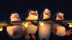 Widescreen Wallpaper: penguins of madagascar