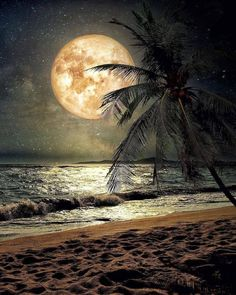 Such a lovely beach night wallpaper for your iPhone X from Everpix! Moon Photography, Landscape Photography, Moonlight Photography, Beautiful Sky, Beautiful Landscapes, Beautiful Moon Pictures, Fantasy Art Landscapes, Beach Pictures, Nature Pictures