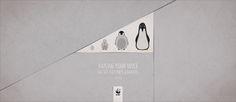 Adeevee - WWF: Linden, Coral, Penguin