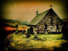 600 Years Old - Cille Choirill