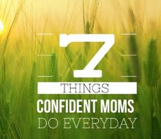 The Confident Mom - Empowering Moms - Strengthening Families - Embracing God's Design Thieves Essential Oil, Essential Oil Spray, Essential Oil Blends, Hamburger Soup, Taco Soup, Crazy Life, The Life, Diy Body Wash, Homemade Fabric Softener