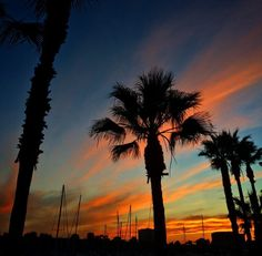 We sure are spoiled by our #sunsets! This image was taken at @ritzcarlton #marinadelrey.