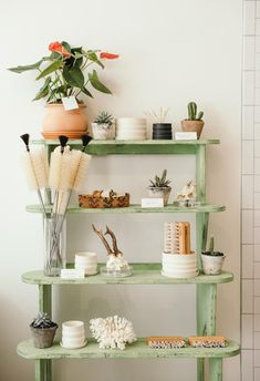 Vintage shelves with plants and ceramic planters.