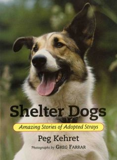 Shelter Dogs: Amazing Stories of Adopted Strays by Peg Kehret,http://www.amazon.com/dp/0807573361/ref=cm_sw_r_pi_dp_NeXPsb1588HZ8RPB