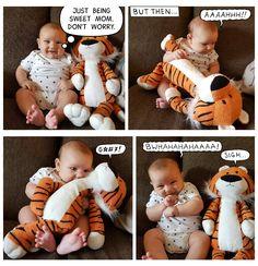 Calvin and Hobbes CalvinandHobbes