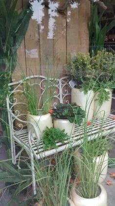 Etalage groengilde buurse