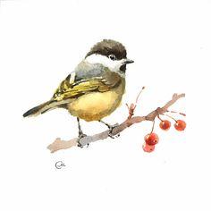 Watercolor Chickadee  Original Bird Illustration by CMwatercolors