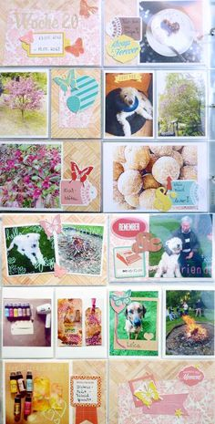"Project Life | Anke Kramer für www.danipeuss.de |Studio Calico ""Heyday"""
