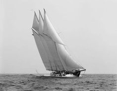 View latest images, news, price & specials of ATLANTIC. The sailing yacht ATLANTIC measures and is a magnificent replica of the 1903 William Gardner designed three-masted sailing schooner Atlantic, owned by Ed Kastelein. Shorpy Historical Photos, Classic Yachts, Classic Sailing, Wooden Boats, Tall Ships, Model Ships, Sailing Ships, Sailing Yachts, Cruises