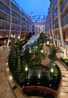 Central Park, Oasis of the Seas! You HAVE to join me and my Beachbody family aboard the Oasis of the Seas next spring! Message me or comment for details to earn your royal vacation! :) Facebook.com/LisaHumphrey100