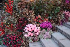 Princess Eugenie and Jack Brooksbank have chosen floral designer Rob Van Helden to create the church. Royal Brides, Royal Weddings, Princesa Eugenie, Eugenie Wedding, Jack Brooksbank, Prince William And Kate, Saint George, Wedding Flowers, Floral Design