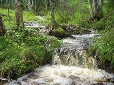 UKK Route, Kuopsilammit – Naruskan Tammi 35 km. A weekend trip or a part of a longer multiday hiking trip. Difficulty: demanding.