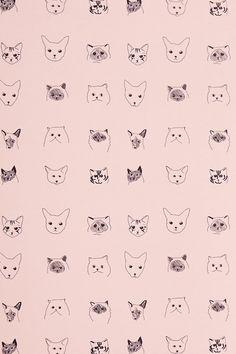 //Cats Wallpaper - Anthropologie.com//