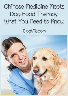 You may know that Chinese medicine can be beneficial to you, but did you know that it may also help your dog? The Chinese medicine approach to dog food therapy is based on the Yin/Yang concept. Learn whether you have a hot dog or a cool pooch, then read on for foods that fit his temperature (and temperament).