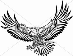 Line Art eagle | ... image description vector eagle keywords eagle bird hawk cross work