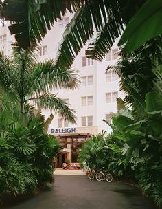 Raleigh Hotel, Florida. Hotel Entry