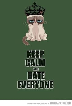 Keep grumpying….Grumpy Cat