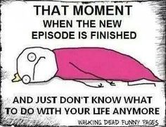 Sherlock... Just think, next week it's back to the hiatus, back to all the theories, back to the madness.