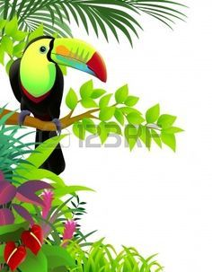 Vector illustration of toucan in the tropical jungle Illustration Story, Free Vector Illustration, Tropical Art, Tropical Birds, Tropical Forest, Jungle Decorations, Landscape Art Quilts, Graffiti Wall Art, Jungle Art