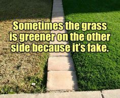 Wisdom sometimes the grass is greener on the other side because it's fake motivational meme be grateful full for what you have change your life