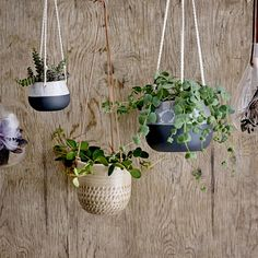 Hang this Bloomingville flower pot from walls or ceilings to bring a touch of nature into your home, Scandi-style. With three hanging rope ties, this pot is best suited to trailing or low-lying plants. Hanging Flower Pots, Hanging Planters, Planter Pots, Hanging Rope, Potted Plants, Indoor Plants, Yucca, Chlorophytum, Green Bar