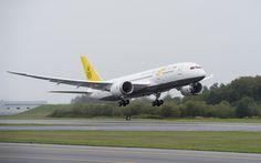Royal Brunei Boeing 787 Dreamliner