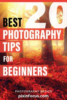 Photography for beginners. The best photography tips for beginners that will allow you to improve your shots and step up your photography game. tips Top 20 Best Photography Tips for Beginners Photography Tips Iphone, Nature Photography Tips, Action Photography, Photography Tips For Beginners, Photography Basics, Types Of Photography, Photography Lessons, Outdoor Photography, Photography Tutorials