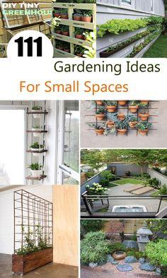 47 Cheap Landscaping Ideas For Front Yard - A Blog on Garden Cheap Landscaping Ideas For Front Yard, Backyard Landscaping, Farm Gardens, Small Gardens, Champs, Urban House, Very Small Garden Ideas, Diy Garden Projects, Garden Crafts