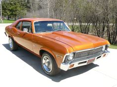 1971 Chevy Nova Maintenance of old vehicles: the material for new cogs/casters/gears/pads could be cast polyamide which I (Cast polyamide) can produce