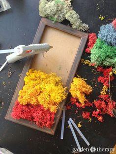 DIY moss art wall frame