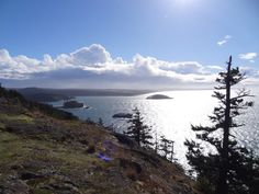 Sares Head in the late afternoon sunlight. Short hike 7 miles from Anacortes.