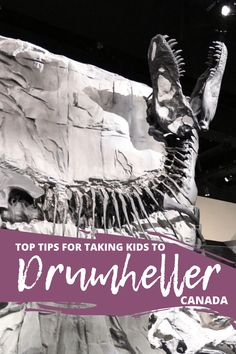 Hannah, a popular Edmonton family lifestyle blog, shares her favourite road trip from Edmonton during the summer with kids. To the dinosaur capital of the world - Drumheller, Alberta, Canada. @honeyandbetts